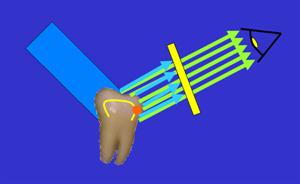 電子釋放能量發出的紫藍色波長可見光即為螢光。一但停止入射光,發光現象有會隨之消失。